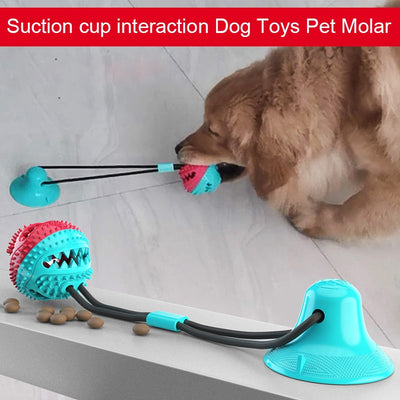Pet Molar Suction Cup Dog Toys Molar Missing Device Suction Cup Rubber Rally Ball Sucker Dog Bite Toy Home Pet Products