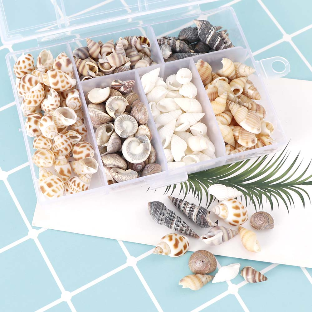 About 100Pcs/Box Natural Conch Shells Mini Conch Corn Screw Wall Decoration DIY Aquarium Landscape Seashells Crafts/party Decor