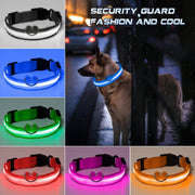 Creative Led Dog Collar Anti-Loss Avoid Car Accidents Glowing Dog Collars Pet products for dogs Without Batter Pug Accessories