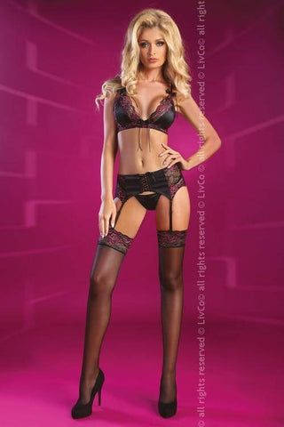 Image of Terrylyn Desire Collection Lingerie Set
