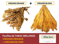 Mélange VIRGINIE: ORANGE + BLOND