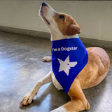 """I'm a Dogstar"" - Dog Bandana - SMALL"
