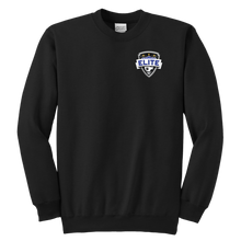 Load image into Gallery viewer, Youth Elite Fanwear Crewneck Sweatshirt