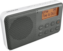 Load image into Gallery viewer, DAB+ / FM-RDS / Portable Travel Digital Radio - DPR-64