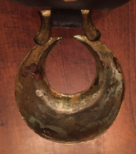 Load image into Gallery viewer, Harness Brasses on Antique Martingale Strap