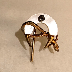 Stickpin, 9 kt gold, mother of pearl shoe, whip & horse leg