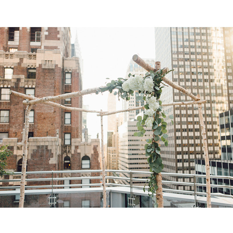 white birch chuppah