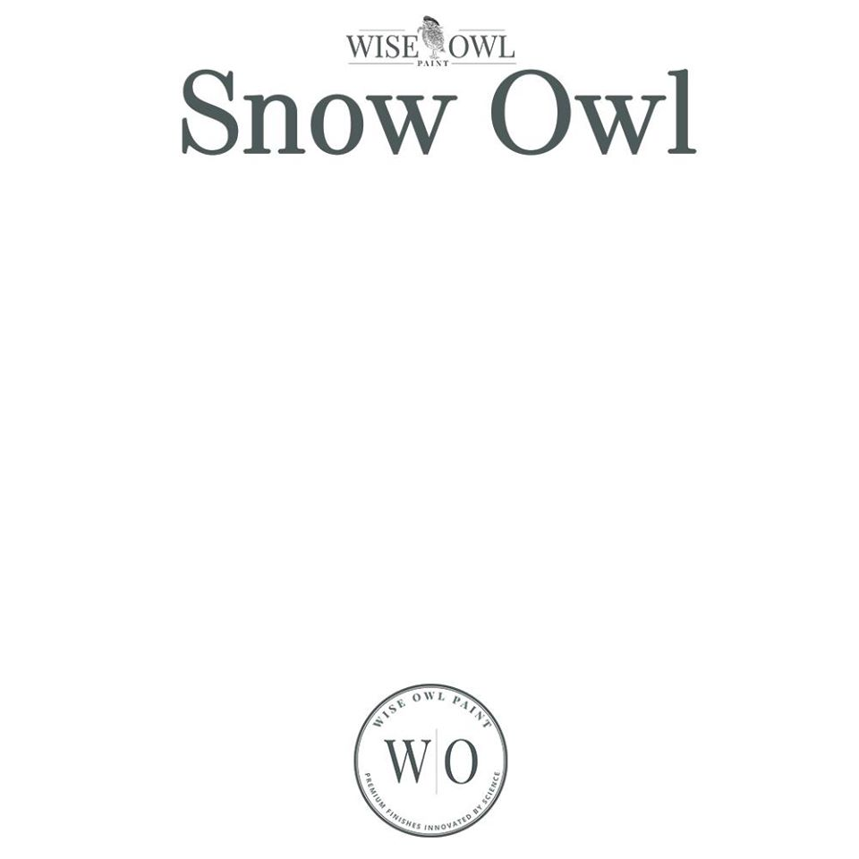 Wise Owl Chalk Synthesis Paint - Snow Owl