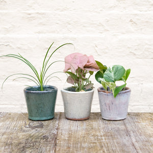 Alicante Plant Pot 'Pearl' (5 sizes)