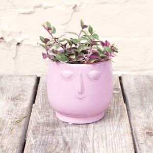 Happy Face Pink Plant Pot (2 sizes)