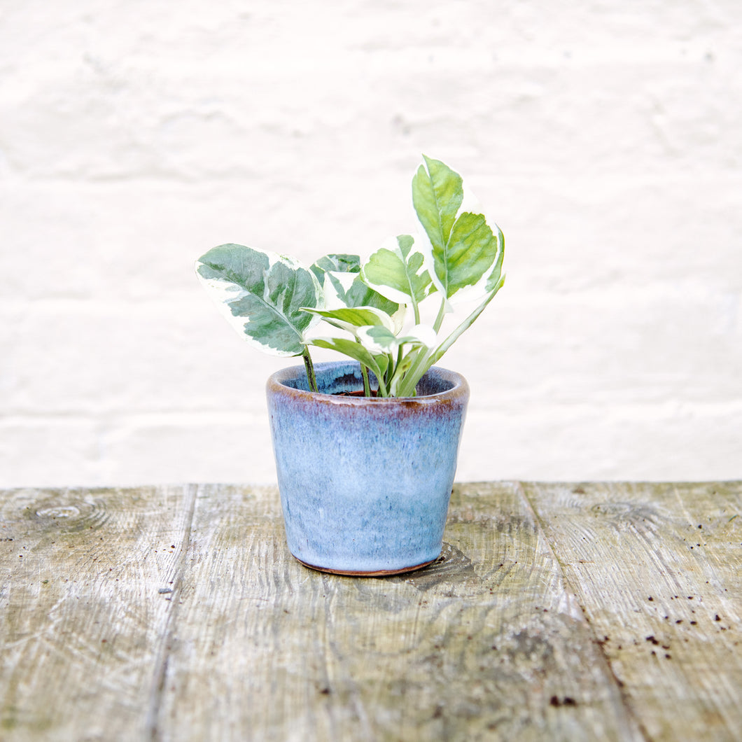 Alicante Plant Pot Dark Blue (4 sizes)