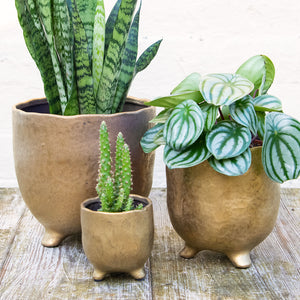 St Tropez Gold Pot (3 sizes)