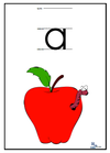 Lower Case Teaching Printing Cards