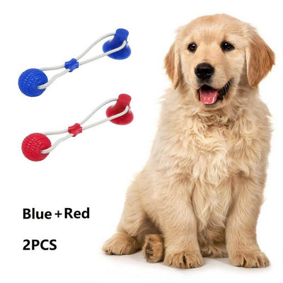 Dog Interactive Suction Cup Push TPR Ball Toys