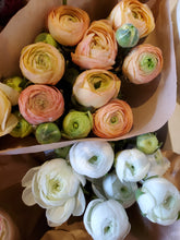 Load image into Gallery viewer, Fresh Cut Ranunculus