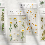 Natural Daisy Stickers - Harper Capital Solutions