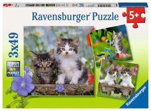 Ravensburger - Tiger Kittens (3x49pcs)