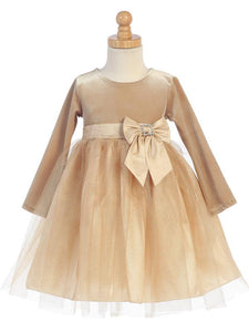 Gold Velvet Glitter Tulle Dress