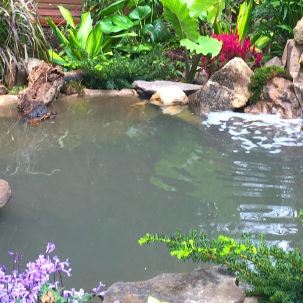 Water Garden Feature