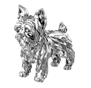 Yorkshire Terrier Charm