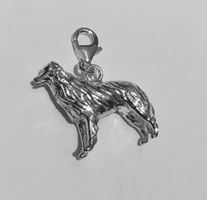 Border Collie Charm