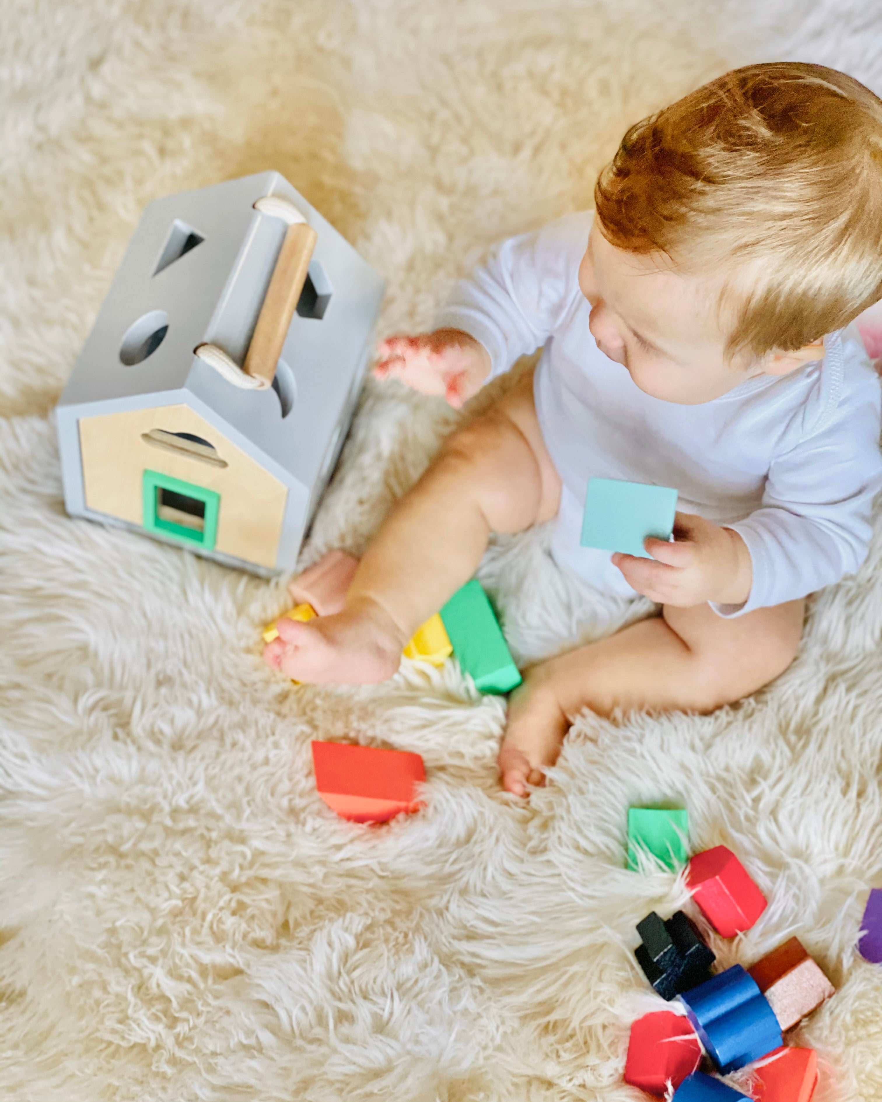 Hip Shape Wood Sorter Baby Toy