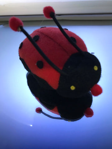 CAT KITTEN PET TOY - LADY BEETLE WIND UP SOFT TOY WITH PULL CORD