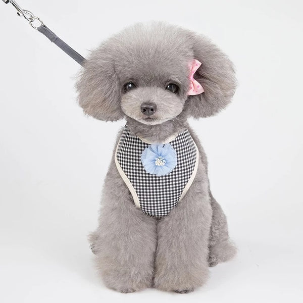 DOG HARNESS & LEAD SET - TINY SQUARE PATTERN GEOMETRIC DESIGN 3D FLORAL MOTIF