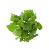 Warrigal Greens