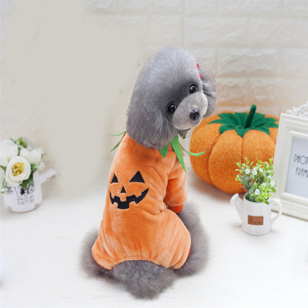 25% OFF on All HALLOWEEN Pet Costumes for Dogs and Cats