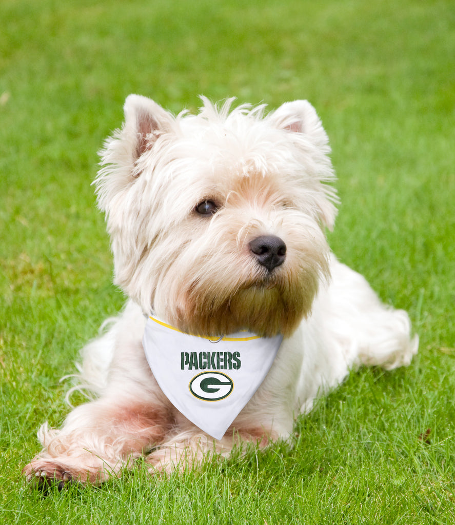 Packers Bandana
