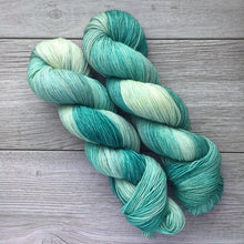 Load image into Gallery viewer, Eel-Infested Waters  |  Princess Bride Inspired  |  RAMbunctious  |  worsted weight