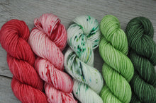 Load image into Gallery viewer, Iced Christmas Cookie  |  MINI skein set of 5  |  gLAMBorous  |  fingering weight