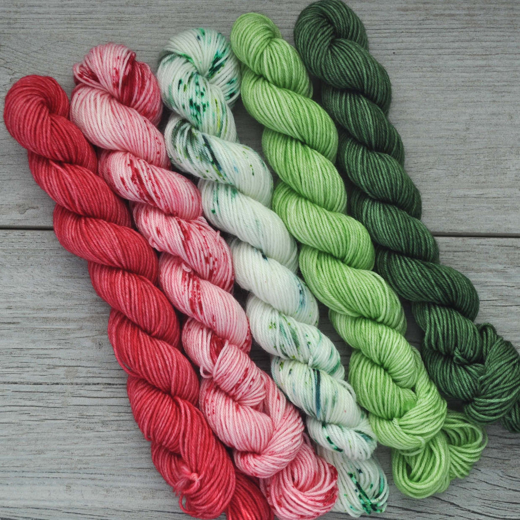 Iced Christmas Cookie  |  MINI skein set of 5  |  gLAMBorous  |  fingering weight
