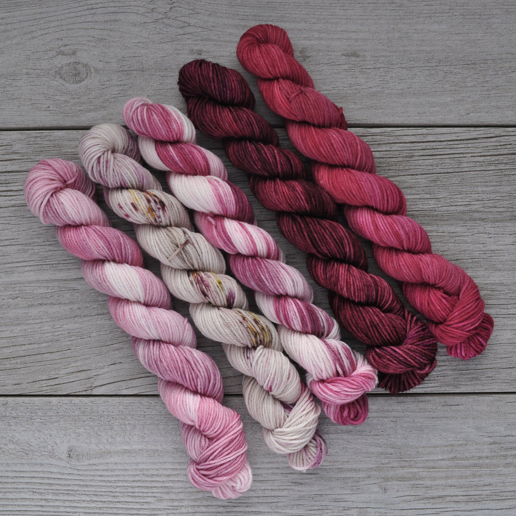 Wuv, Twu Wuv  |  Princess Bride Theme  |  MINI skein set of 5  |  SHEARsheep  |  fingering weight