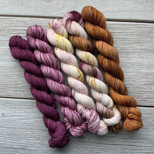 Load image into Gallery viewer, Royal Realm  |  MINI skeins set of 5  |  SHEEPISHsock  |  fingering weight