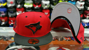 Matching New Era Toronto Blue Jays Fitted hat Jordan 5 Red Suede History Flight