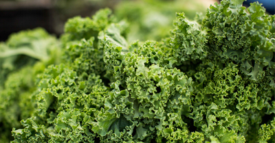 What Makes Good Greens?