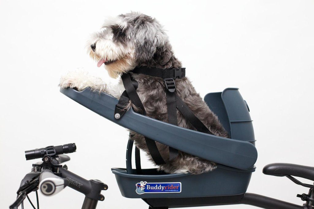 Buddyrider Bicycle Pet Seat <br>Pre-order, estimated ship Oct 9th