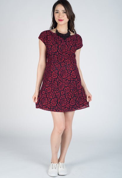 Chester Lace Nursing Dress