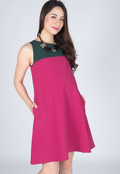 Zella Dual Colour Nursing Dress