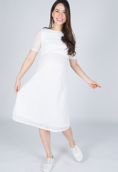 Abigail Nursing Dress