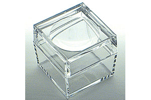 Large Magnifying Bug Box