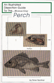 Dissection Guide to the Perch