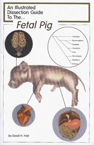 Dissection Guide to the Fetal Pig