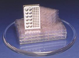 Microplates - Small Wells (Pack of 6)