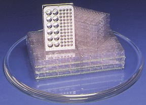 Microplates - Combination Pack (Pack of 12)