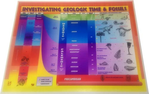 Investigating Geological Time and Fossils Transparency
