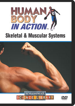 Skeletal & Muscular Systems (DVD)