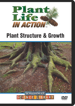 Plant Structure & Growth (DVD)